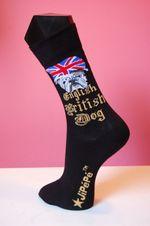 British-dog-black